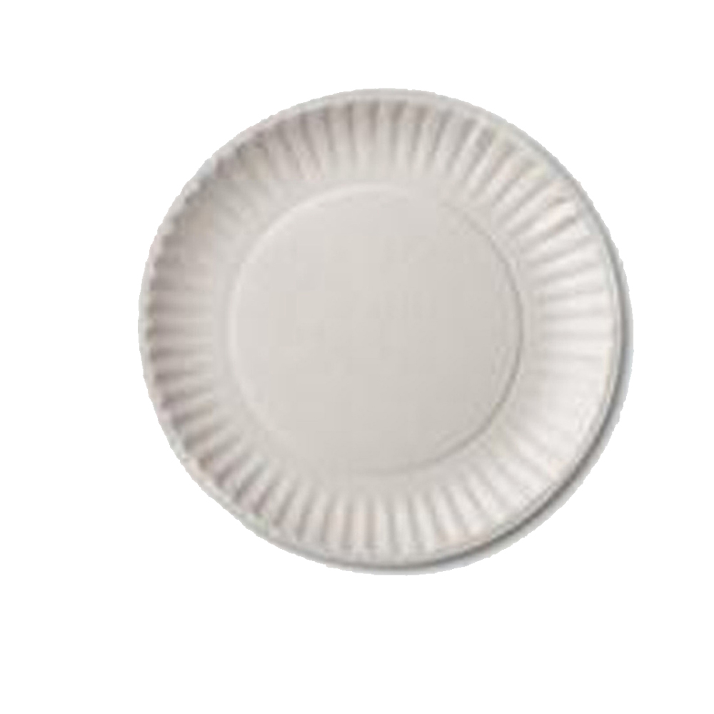 "Aspen White 6"" Uncoated Paper Plate 10106"