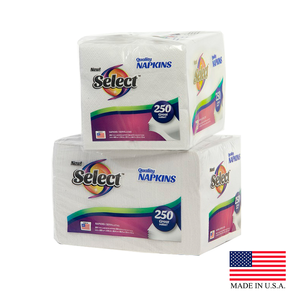 Select White 1ply 250 Count Lunch Napkin 00417