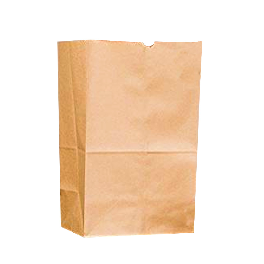 Duro Bag Mfg. - Kraft 25 lb. Paper Bulwark Heavy Bag 71004