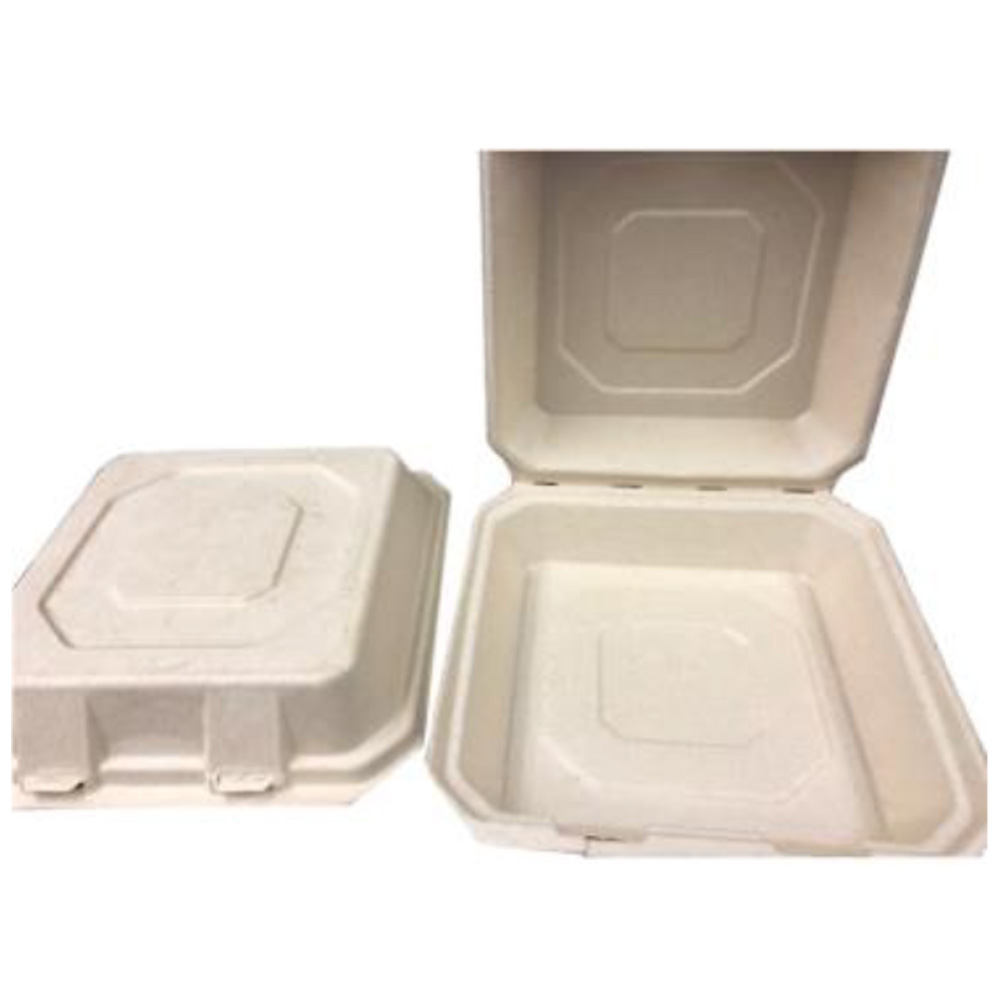 "Bagasse 9""x9"" Square Hinged Take Out Box D020F"