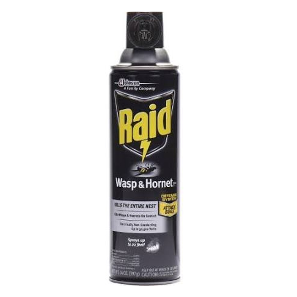 SCJ Professional - Raid 4 oz. Wasp & Hornet Insect Killer Spray 668006